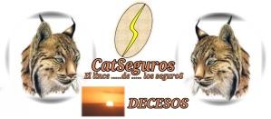 CATSeguros_LOGOTIPO_LINCE_DECESOS