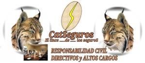 CATSeguros_LOGOTIPO_LINCE_RESPONSABILIDAD_CIVIL_ALTOS_CARGO