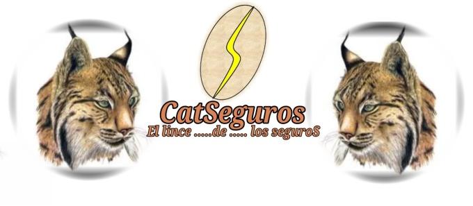 CATSeguros_LOGOTIPO_LINCE