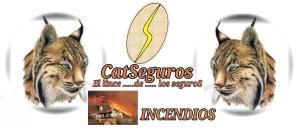 CATSeguros_LOGOTIPO_LINCE_INCENDIOS