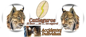 CATSeguros_LOGOTIPO_LINCE_ACCIDENTES_INDIVIDUAL