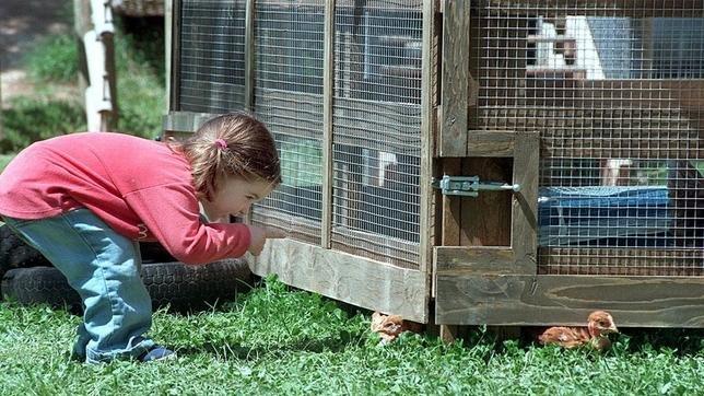 Niños-que-viven-en-el-campo-son-más-resistentes-a-las-alergias