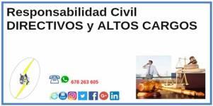 IconoCatSeguros201808Agosto_21ResponsabilidadCivilDirectivosAltosCargos2
