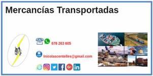 IconoCatSeguros201809Septiembre_24MercanciasTransportadas2