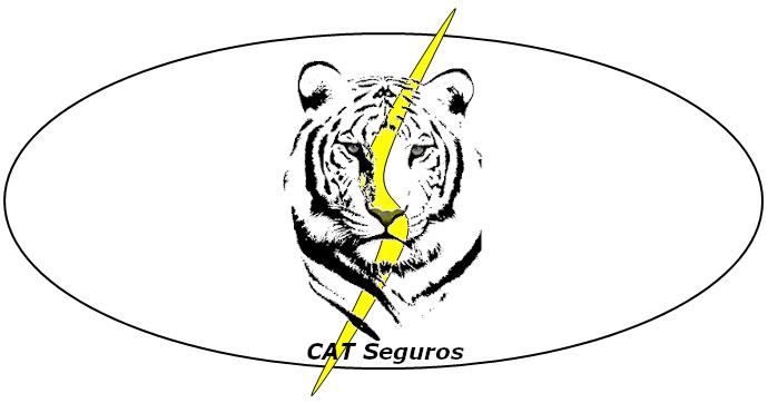catsegurosanagramatigre20190827_09-5
